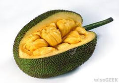 Jackfruit, Sweet and Peeled - 500 g