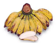 Plantain, Saba Banana 'Pisang Kepok' - 1 Fan