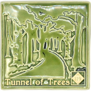 6x6 Tunnel of Trees