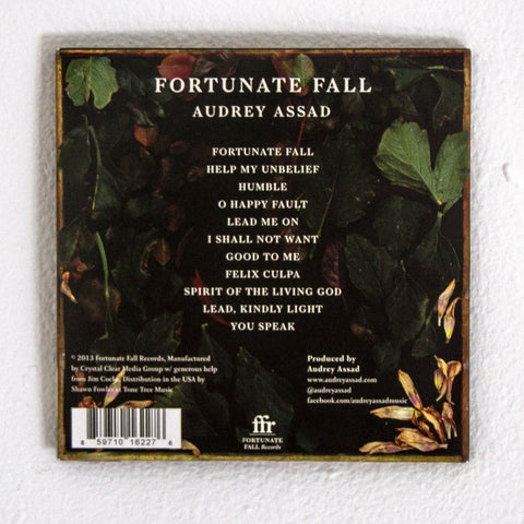 Fortunate Fall CD