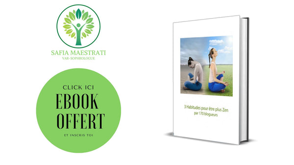 EBOOK OFFERT
