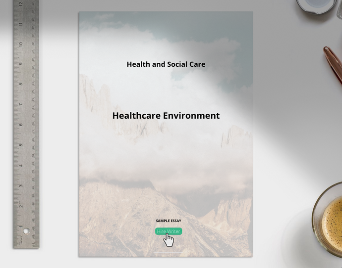 Health and Social Care Healthcare Environment Essay sample