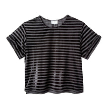 Load image into Gallery viewer, Chloe Crop Top in Velour Stripe