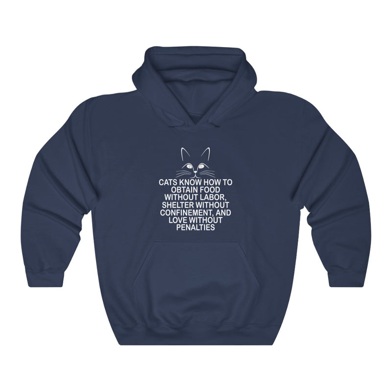 Cats Know How Unisex Heavy Blend™ Hooded Sweatshirt