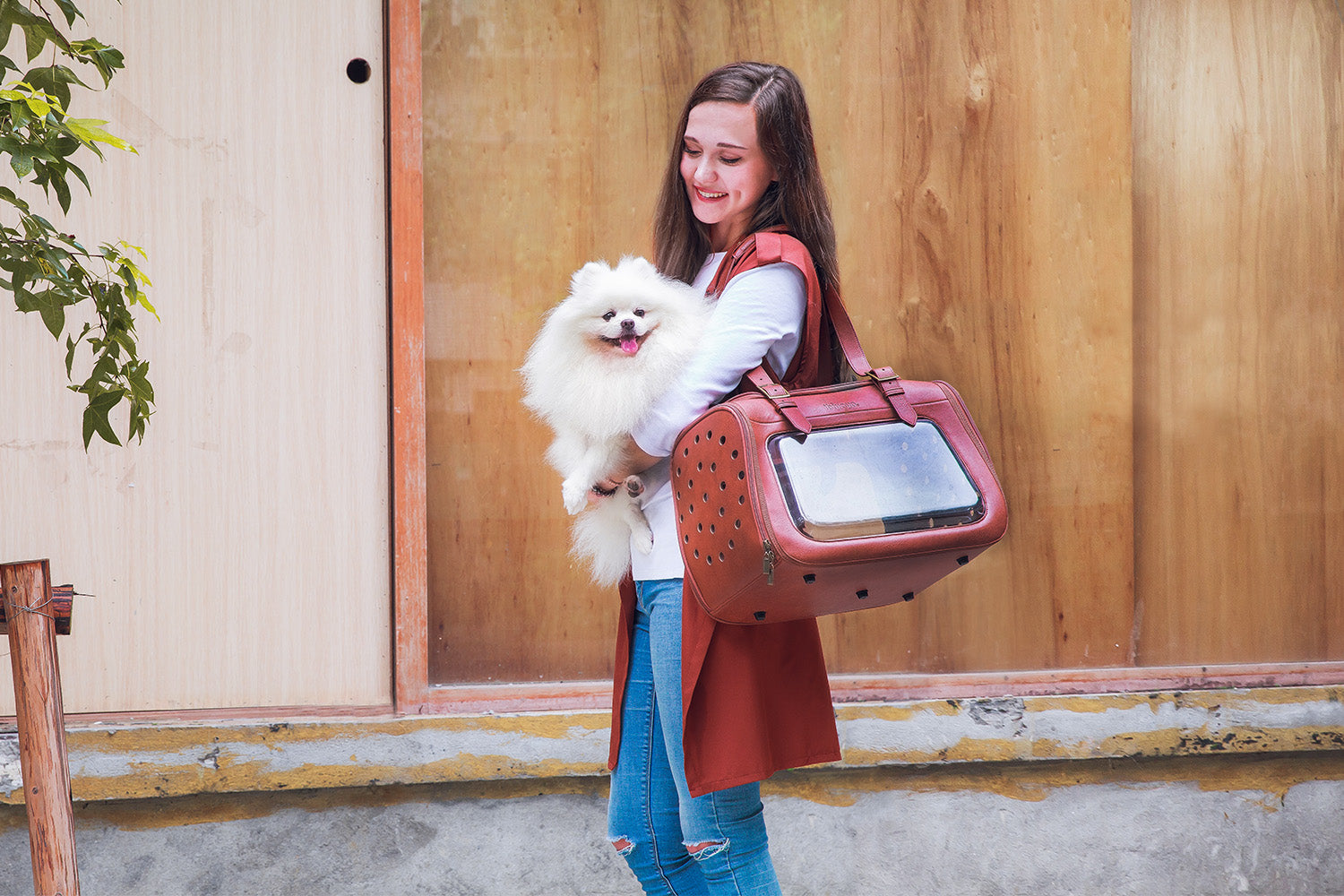 The Portico Deluxe Pet Transporter Bag By Ibiyaya - Brown FC1821-LB