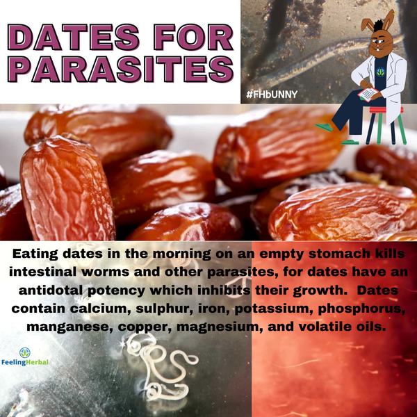 Eat Dates For Parasites