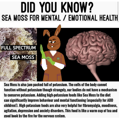 Sea Moss for Mental & Emotional Health