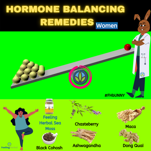 Hormone Balance Remedies for Women