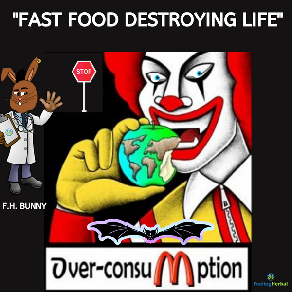Fast Food Destroys Lives
