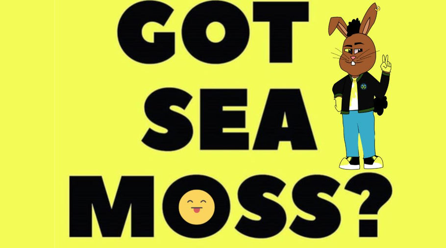 Did You Have Sea Moss Today?
