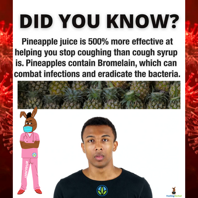 Eat More Pineapples