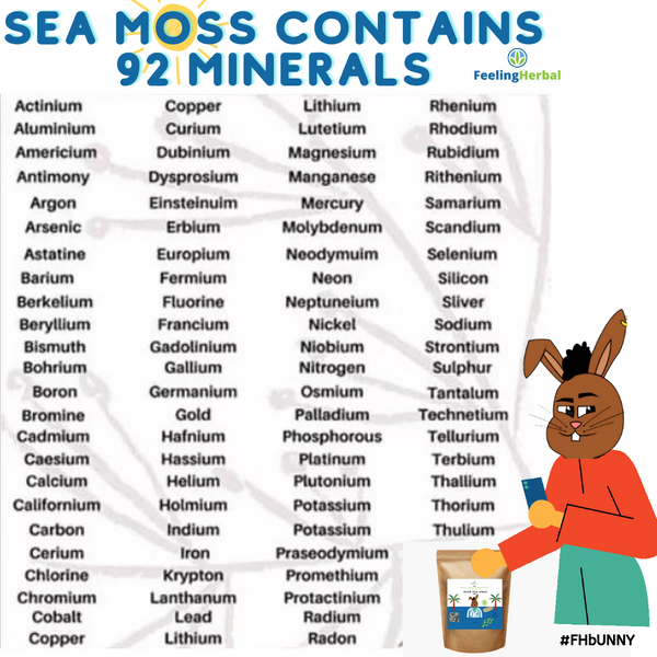 Sea Moss Minerals List