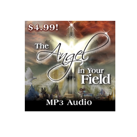 The Angel In Your Field