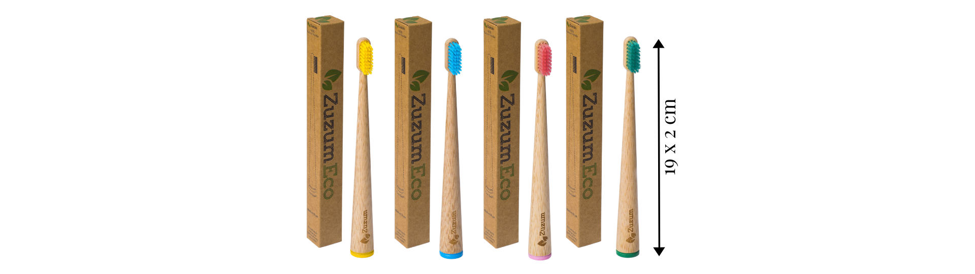 The dimensions of our adult self standing toothbrushes. In pink, blue, yellow and green.