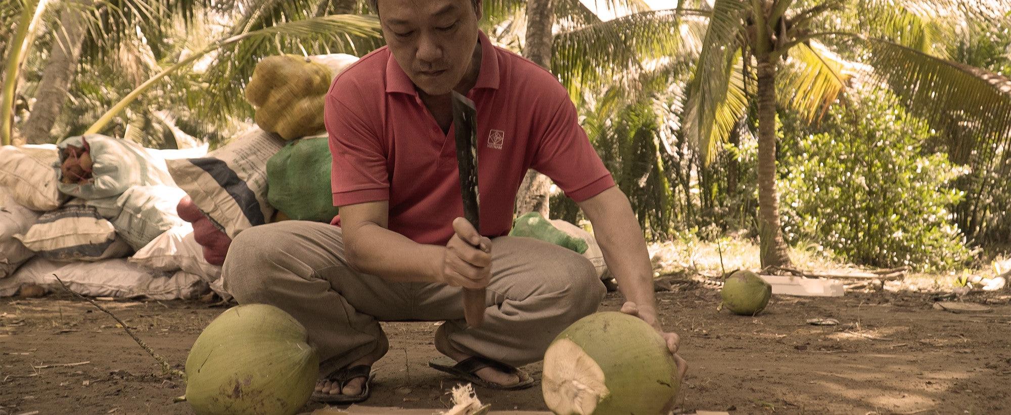 A Vietnamese man teaches us how to open a coconut.