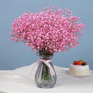 Baby's Breath Flower Seeds (100PCS)