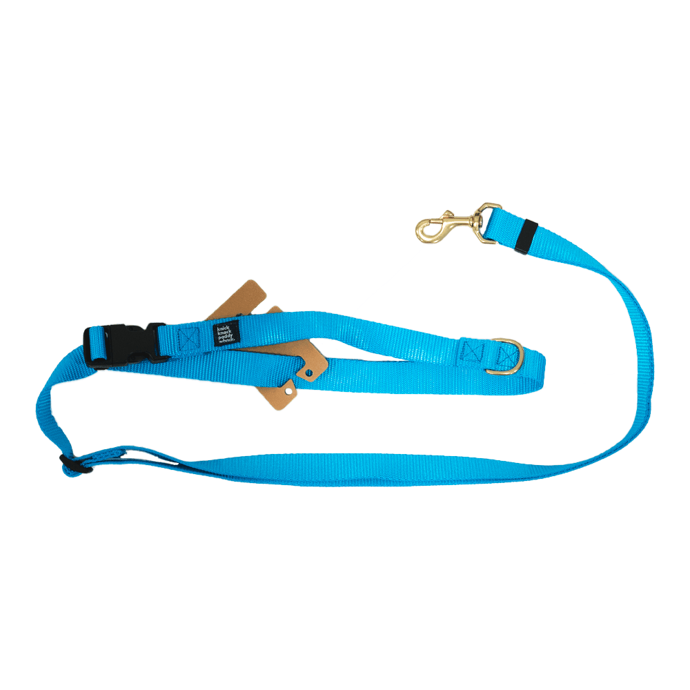 Blue Leash Adjustable 4ft-7ft | Knick Knack Paddy Whack