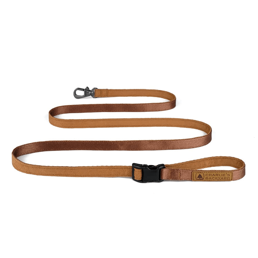 Easy Leash (Brown-One Size) | Charlie's Backyard