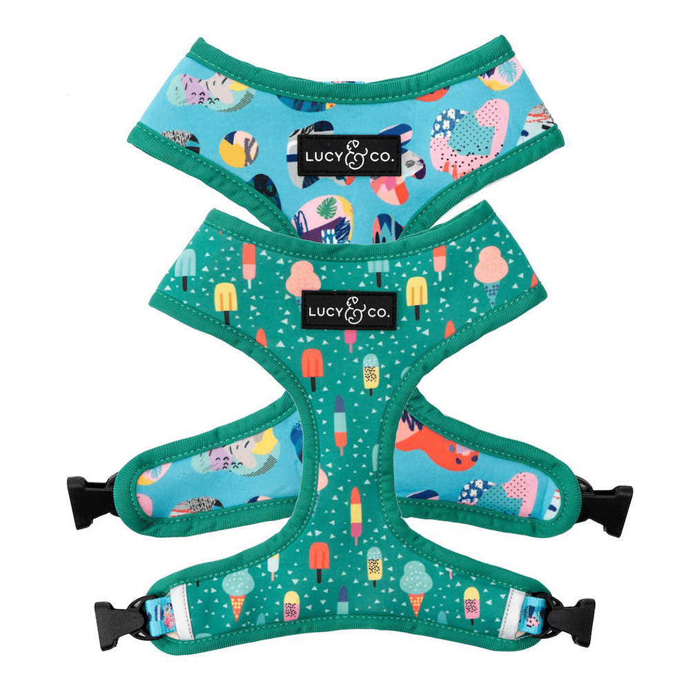 Ice Cream Dream Reversible Harness | Lucy & Co.
