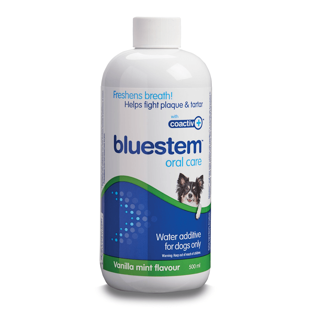 Oral Care Water Additive (Vanilla Mint) | Bluestem