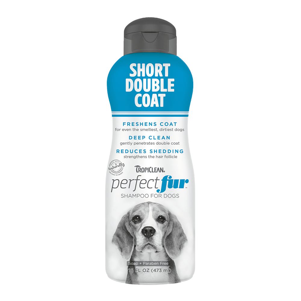 Short Double Coat Shampoo 16oz