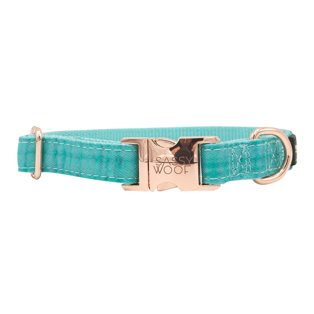 Wag Your Teal Collar | Sassy Woof