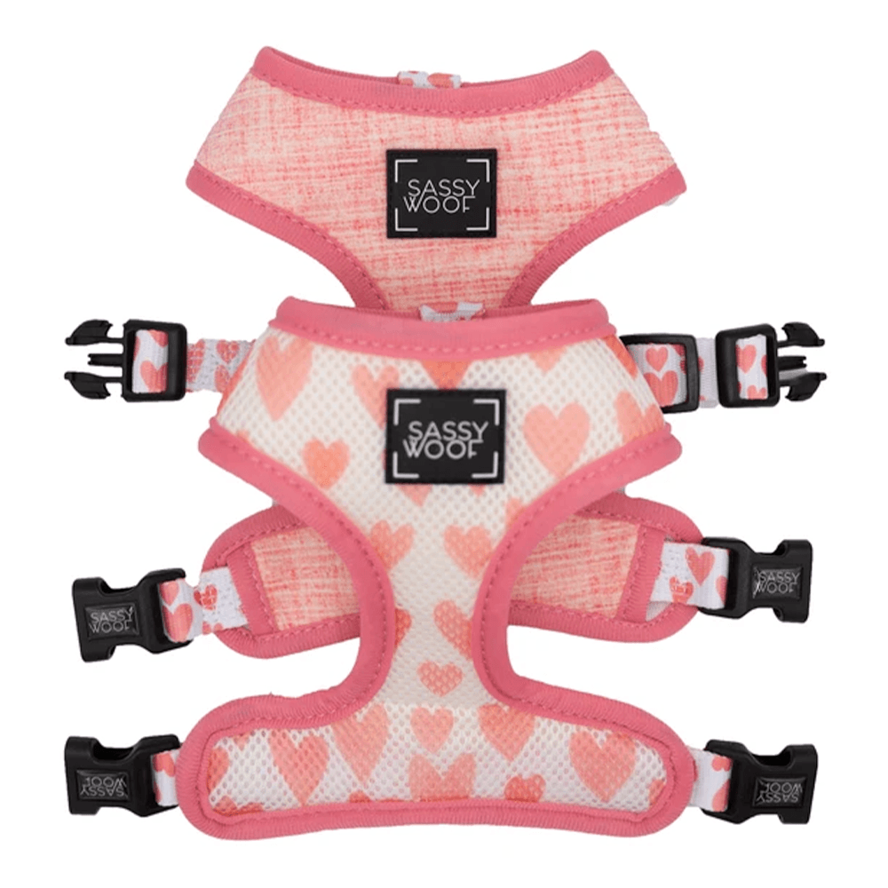 Dolce Rose Reversible Harness | Sassy Woof