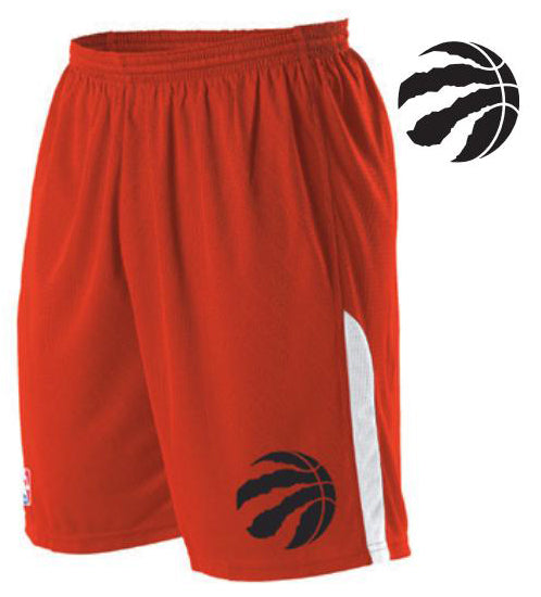 Alleson A205LY Youth NBA Logo Game Short - Toronto Raptors