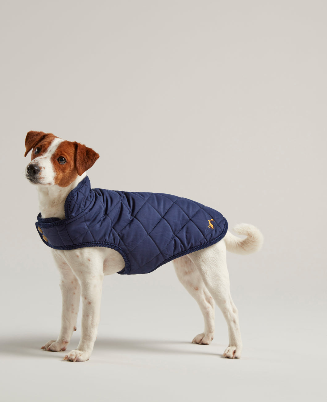 Joules Quilted Dog Coat in Navy