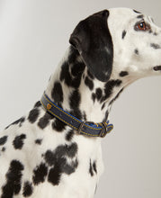 Load image into Gallery viewer, Navy blue with bold yellow stitching - leather dog collar from Joules.