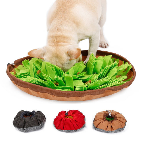 Snuffle mat. Speedy eating dog. Speedy eating cat. Slow feeder. Slow down eating.