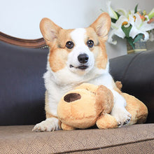 Load image into Gallery viewer, A soft toy with a realistic heartbeat to comfort your new or anxious puppy.