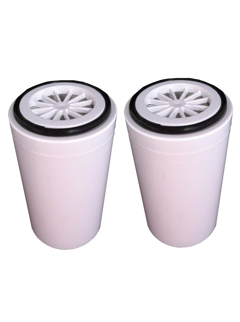 Replacement Shower Filter Cartridge 2 pack (1 Years Supply) - Water Filter Men