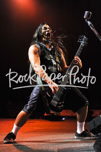 Robert Trujillo by Paul Bachmann