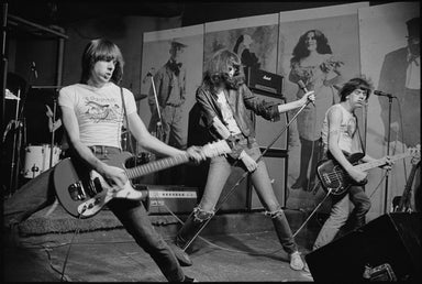 The Ramones by Roberta Bayley