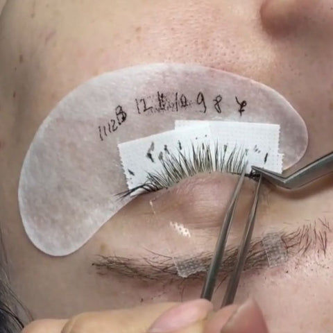 How do L curl lashes work?