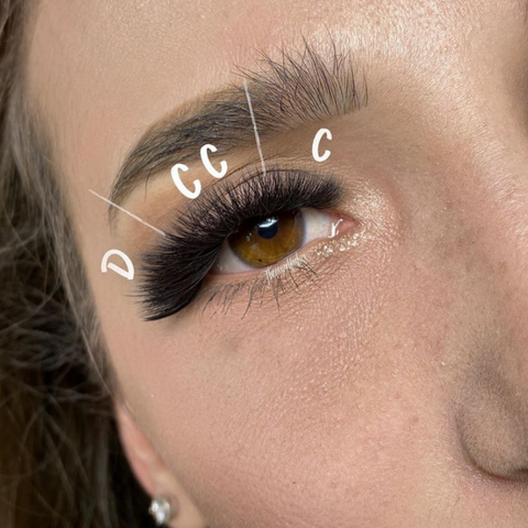 Lash Mapping With Curls