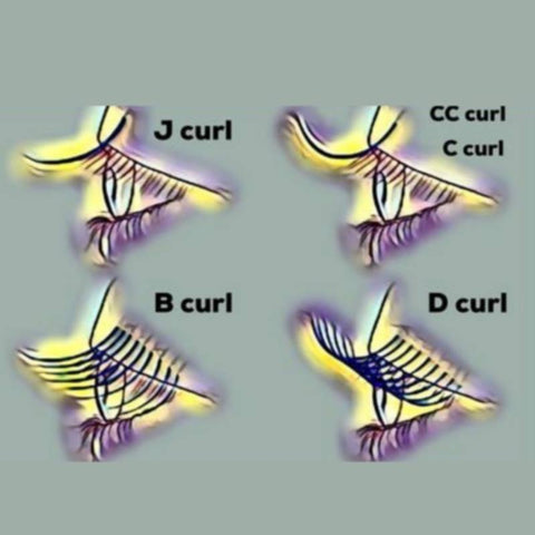 What are the different eyelash curls?