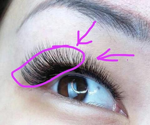 What lashes are best for Monolids?