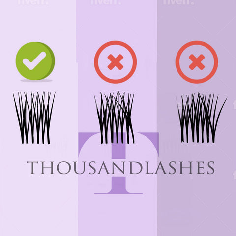 Lash Direction And Lash Placement: Everything You Need To Know