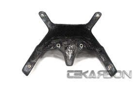 2015 - 2016 BMW F800R Carbon Fiber Stay Bracket