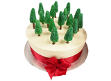 Magical Christmas Woodland Buttercream Sponge Cake