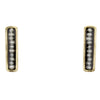 Orion Earrings Small, Black
