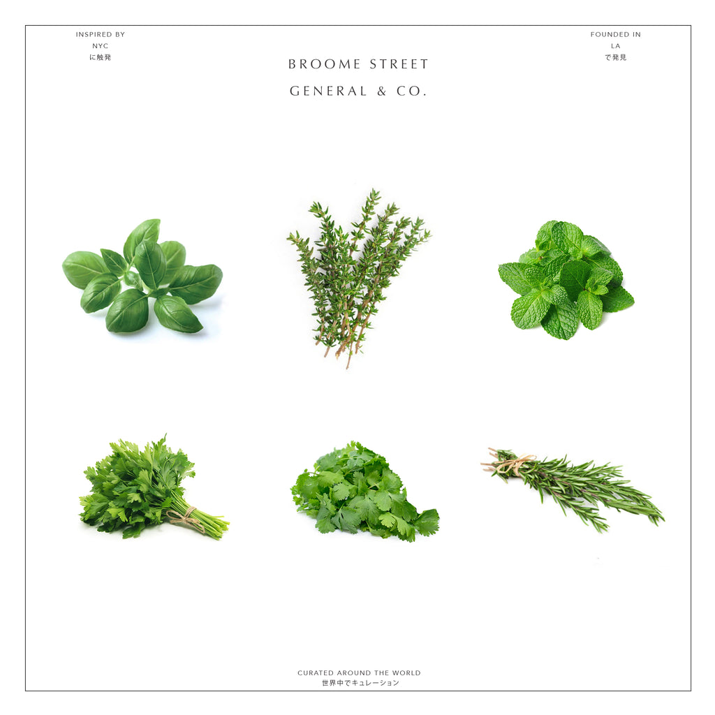 FRESH HERBS BUNDLE