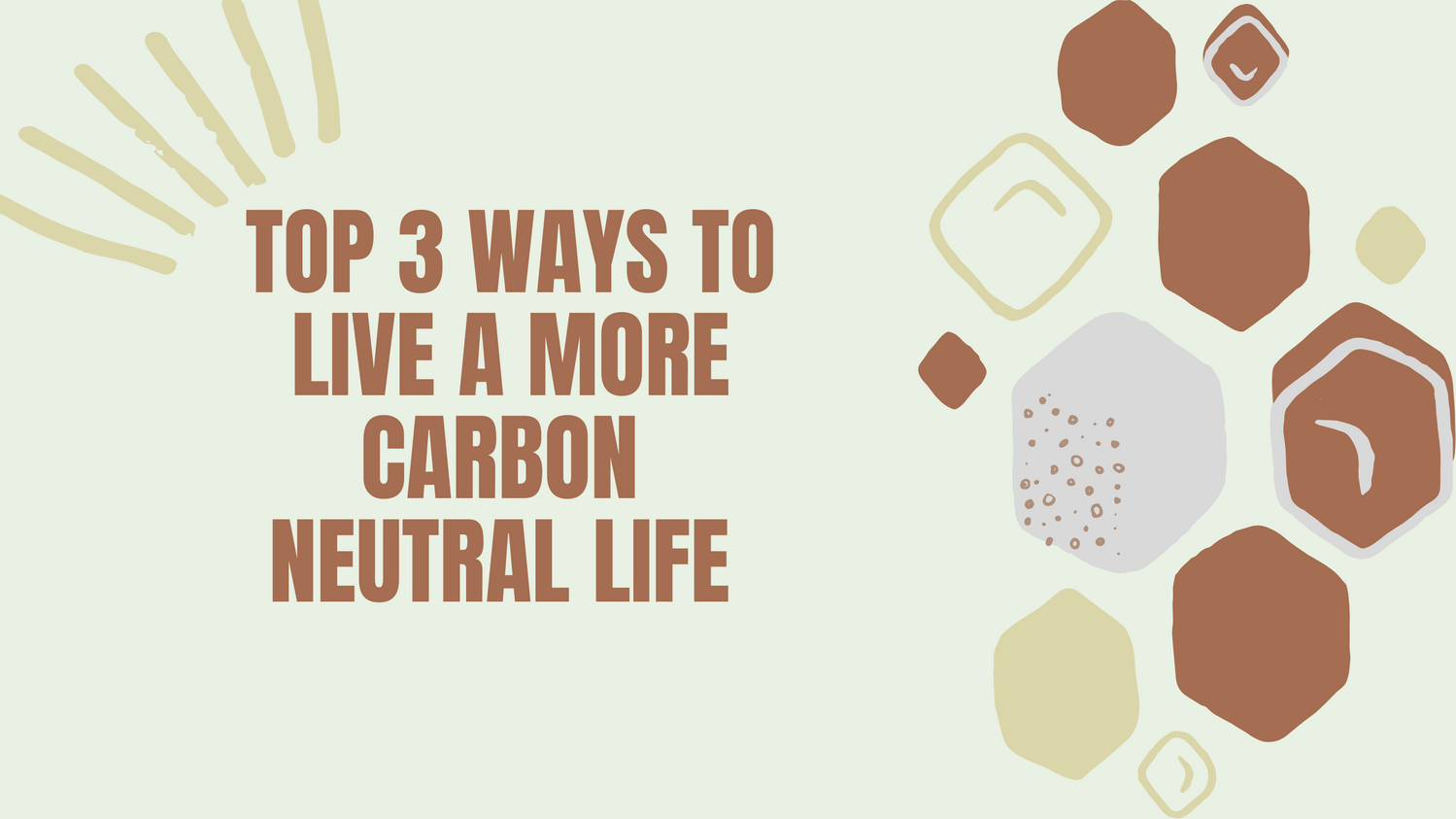 Top 2 Tips to lead a more carbon neutral life