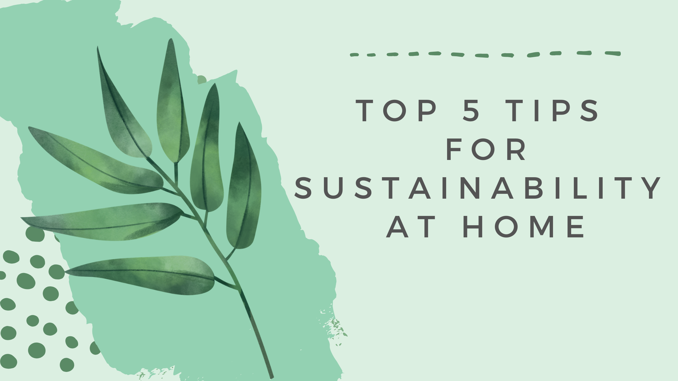 Top 5 tips for sustainability at home