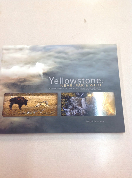 Yellowstone: Near, Far and Wild