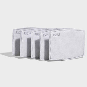 5 layer PM2.5 Carbon Filter Sheet