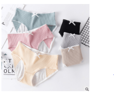 Cool Style Fashion Leak Proof Menstrual Panties