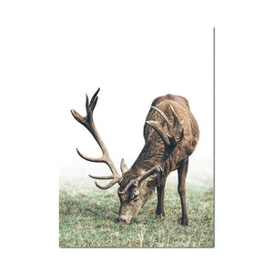 Soft Porium Deer / 50x70 cm Scandinavian Poster Nordic Style Deer Wood Wall Art Canvas